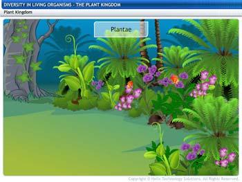 Animated video Lecture for The Plant Kingdom