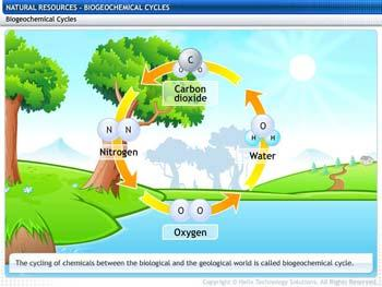 Animated video Lecture for Biogeochemical Cycles