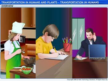 Animated video Lecture for Transportation in Humans