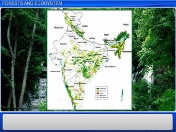 Animated video Lecture for Forests and Ecosystem