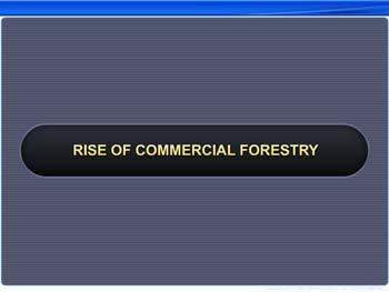 Animated video Lecture for Rise of Commercial Forestry