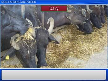 Animated video Lecture for Non-Farming Activities