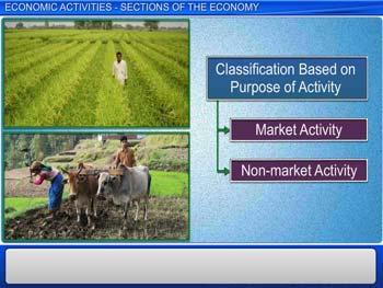 Animated video Lecture for Economics Activities - Sections of the Economy
