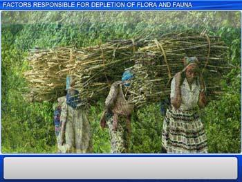 Animated video Lecture for Factors Responsible for the Depletion of Flora and Fauna