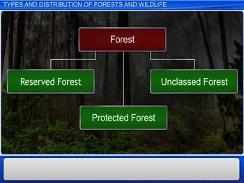Animated video Lecture for Types and Distribution of Forests and Wildlife