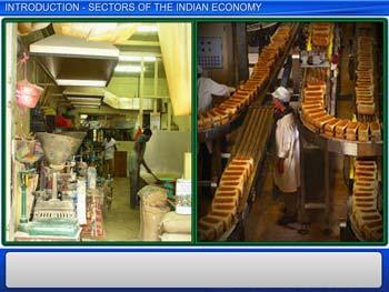 Animated video Lecture for Introduction - Sectors of the Indian Economy