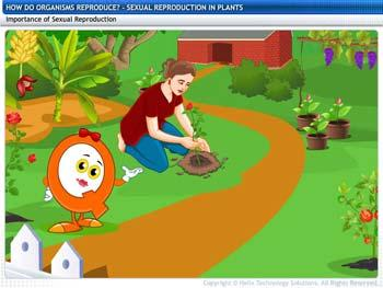 Animated video Lecture for Sexual Reproduction in Plants