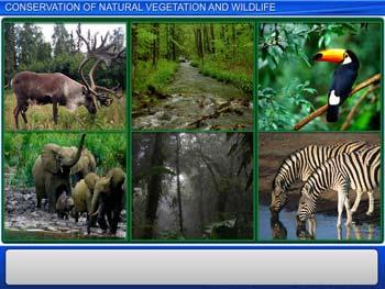 Animated video Lecture for Conservation of Natural Vegetation and Wildlife