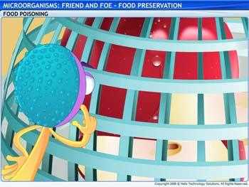 Animated video Lecture for Food Preservation