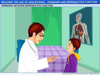 Animated video Lecture for Role of Hormones in Initiating Reproductive Function