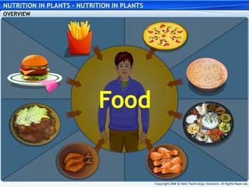 Animated video Lecture for Nutrients in Plants