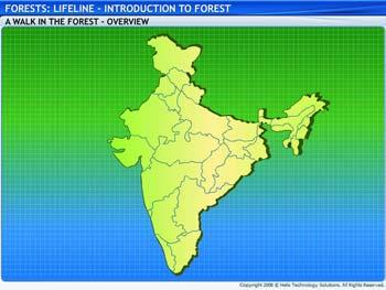 Animated video Lecture for Introduction to Forest