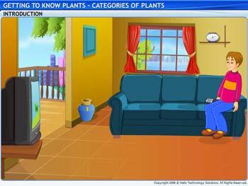 Animated video Lecture for Categories of Plants