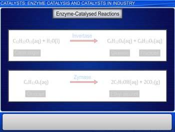 Animated video Lecture for Catalysts: Enzyme Catalysis And Catalysts In Industry