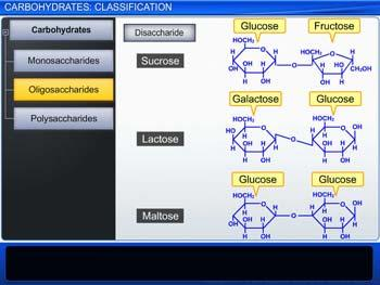 Animated video Lecture for Carbohydrates: Classification