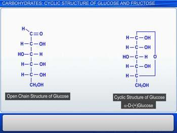 Animated video Lecture for Carbohydrates: Cyclic Structure Of Glucose And Fructose
