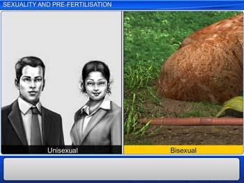 Animated video Lecture for Sexuality and Pre-fertilisation