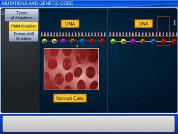 Animated video Lecture for Mutations And Genetic Code