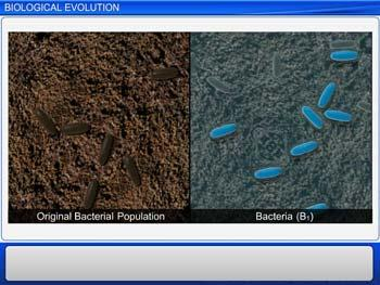 Animated video Lecture for Biological Evolution