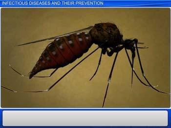 Animated video Lecture for Infectious Diseases and Their Prevention