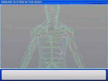 Animated video Lecture for Immune System In The Body