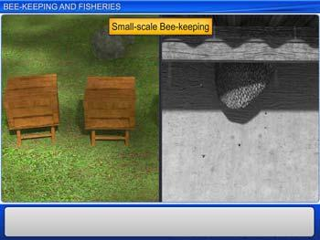 Animated video Lecture for Bee-Keeping and Fisheries