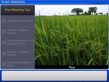 Animated video Lecture for Plant Breeding