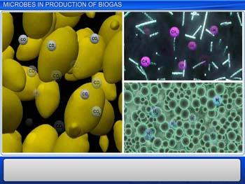 Animated video Lecture for Microbes In Production of Biogas