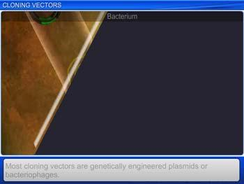 Animated video Lecture for Cloning Vectors