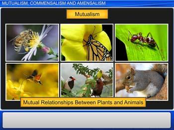 Animated video Lecture for Mutualism, Commensalism and Amensalism