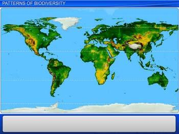 Animated video Lecture for Patterns of Biodiversity
