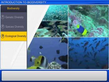 Animated video Lecture for Introduction to Biodiversity
