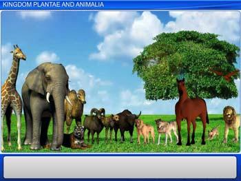 Animated video Lecture for Kingdom Plantae and Animalia