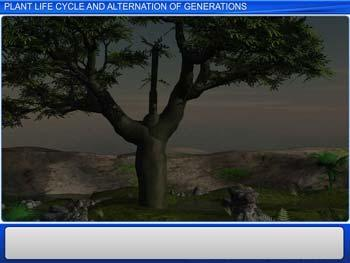 Animated video Lecture for Plant Life cycles and Alternation of Generations
