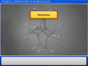 Animated video Lecture for Chemical Composition of Biomolecules