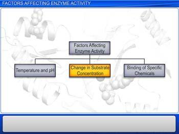 Animated video Lecture for Factors Affecting Enzyme Activity