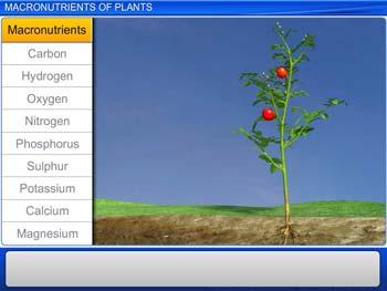Animated video Lecture for Macronutrients of Plants