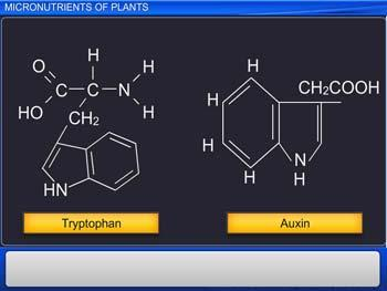 Animated video Lecture for Micronutrients of Plants