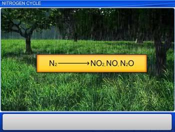 Animated video Lecture for Nitrogen Cycle