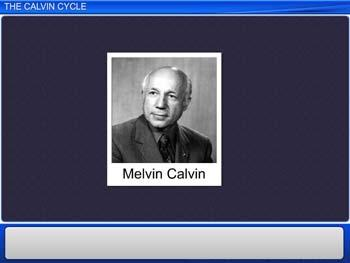 Animated video Lecture for The Calvin cycle