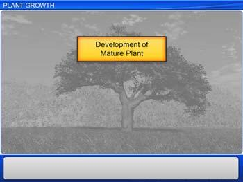 Animated video Lecture for Plant Growth