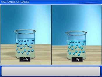 Animated video Lecture for Exchange of Gases