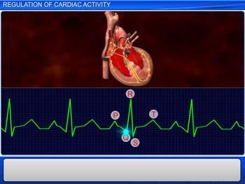 Animated video Lecture for Regulation of Cardiac Activity