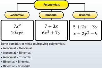 monomials, binomial, trinomial, polynomials, multiplying polynomials