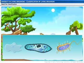 Animated video Lecture for Classification of Living Organisms