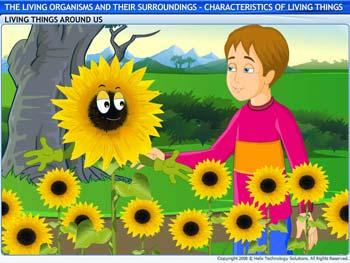Characteristics of Living Things of Living Things